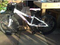 Girls 20 inch Saracen Spice Mountain Bike