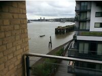 Office space to share in a new and friendly office near Greenwich : £300 per calendar month.