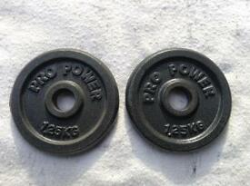 16 x 1.25kg Pro Power Standard Cast Iron Weights