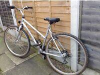 Ridgeback ladies bicycle women's hybrid bike