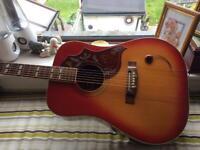 Kiso Hummingbird guitar