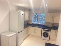newly refurbished 1 bedroom flat only 185 p/w