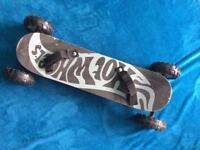 Mountain board /skateboard
