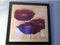 Large abstract picture print of poppies in a black wooden frame