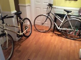 Two bicycles, very good condition £65 and £85 could deliver