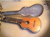 Top quality Spanish guitar
