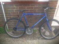 Adults Crusader 15 Speed Mountain Bike