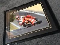 Carl Fogarty signed picture.