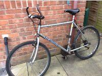 Men's Racer Bike