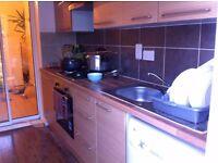 Modern spacious studio flat in Asian Muslim house in Thornton Heath, All Inclusive