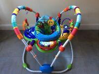 Baby Einstein Neighbourhood Friends Activity Jumper.