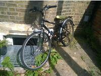 Hawk Woodland Hybrid Bike