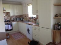 Complete kitchen with some appliances