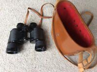 CARTON Binoculars 8x40 Japan vintage