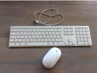 Apple Mac keyboard and wireless mouse