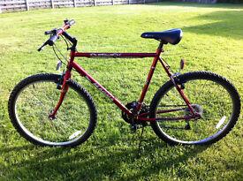 Magma Outreach 56cm Frame Bike