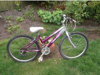 Girls mountain bike - GREAT CONDITION