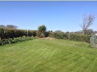 Grass cutting, Hedges/shrubs trimmed & General garden jobs