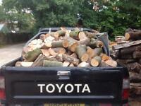 LOGS - Hardwood
