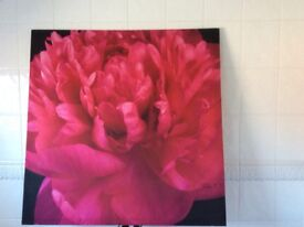 Two large canvas picutres