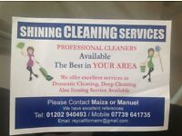Professional Cleaners with excellent jobs references
