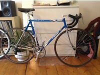 MOSER FORMA hour record colours custom racing bike
