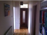 2 double bed flat with study