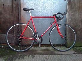 Raleigh persuit Mens xl road racer racing bike