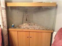 4ft corner fish tank and unit
