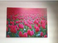 Lovely ikea picture of tulips scene