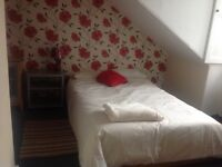 Short term double room for August. Spacious central flat.
