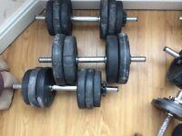 Fitness wieghts