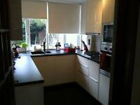 kitchen & bathroom.. plumbing electric & gas