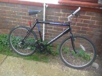 Mans Townsend 18 Speed Mountain Bike