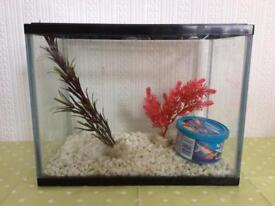 12L fishtank with fish food - Only £10!
