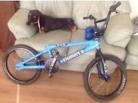 Retro Gt thumper bmx bike