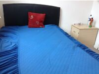 Double room for rent in sparkhill