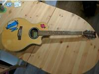 Legacy Electric Acoustic