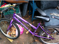 mountain bike purple NEED FIXING