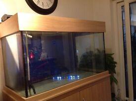 FREE ******* 4ft x 2ft Aquarium (502 litres ) for both Tropical or Marine set up