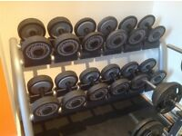 Technogym bench, dumbbells and barbells.