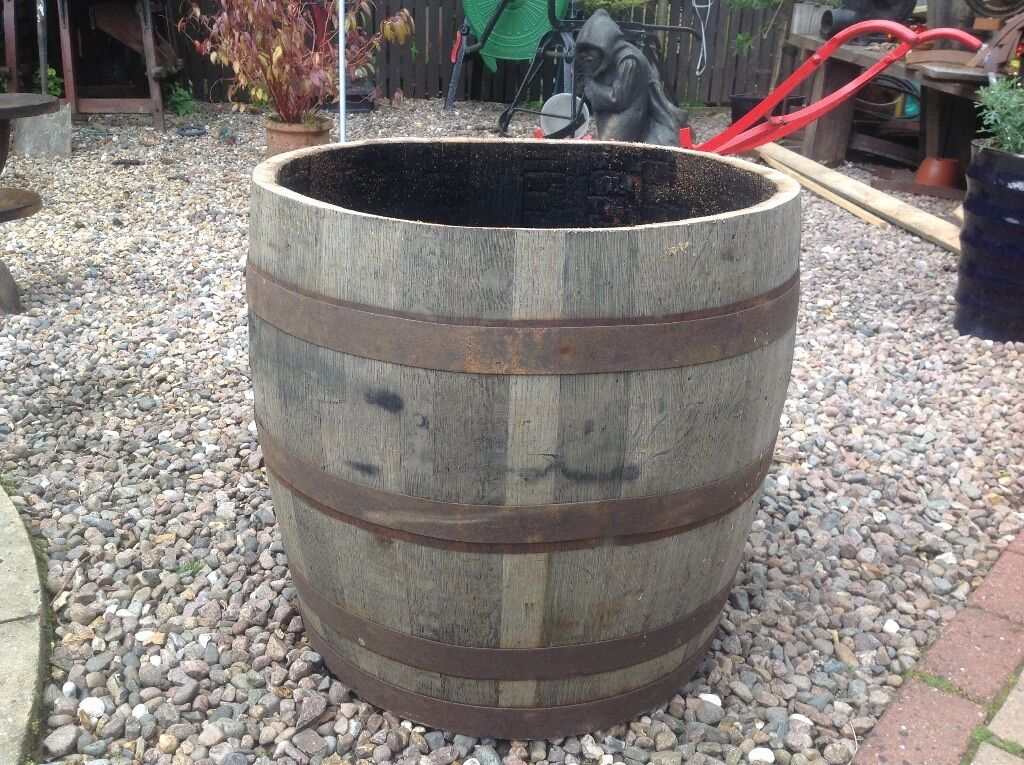 Half Oak Barrel Planter For Garden Patio Shrub Tree In Draperstown