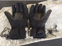Technical Ski/Walking Gloves