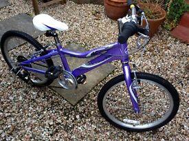 Lovely girls purple Giant bike.