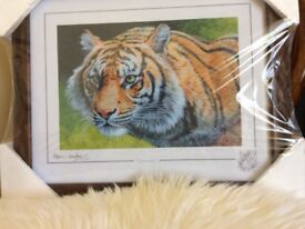 Framed picture limited edition signed.