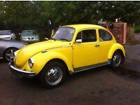 vw beetle tax free 1303