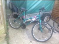 Ladies Desire 15 Speed Mountain Bike