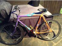 Retro Raleigh mustang mountain bike