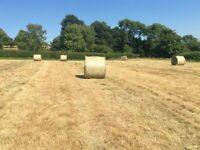 Organic round bale hay