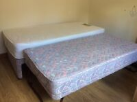 Single Bed with Guest Trundle Bed